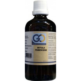 GO Betula Pubescens - 100ml